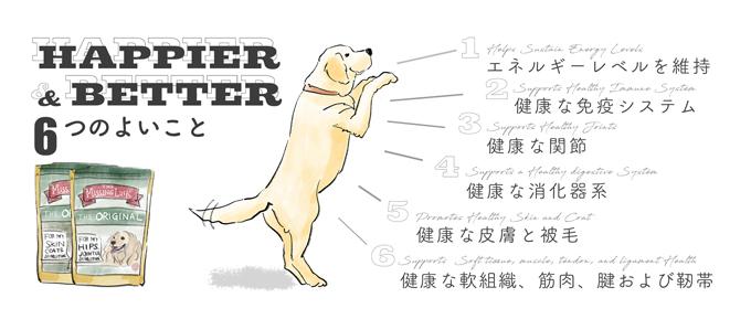 ミッシングリンク 子犬からシニア犬まで、ペットフードに不足しがちな大切な栄養素を補い、消化器系・免疫系・皮膚や被毛の健康をサポートする、オールインワンサプリメントです。