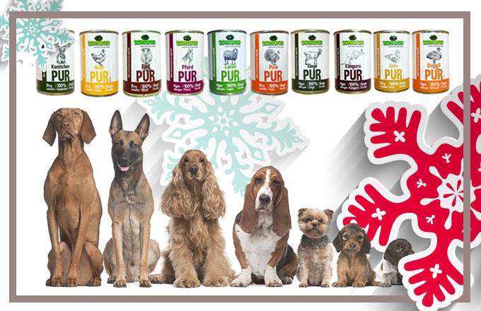 ドイツ、シェーカー社の缶詰が品揃え豊富なわけは、愛犬にたくさんの味を楽しんでもらいたいことはもちろんですが、何よりアレルギーで食べものへの制限のある子のために選べる品を豊富にしています。ぜひ、お試しください。